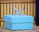 Marturie botez carucior sticla in cutie bleu