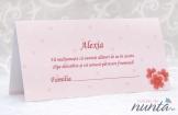 Plic de bani roz cu inimioare si floricele Sweet Pink