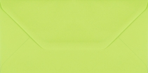 Plic dreptunghiular mare verde deschis