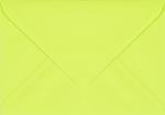 Plic dreptunghiular mic verde crud