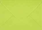 Plic dreptunghiular verde deschis